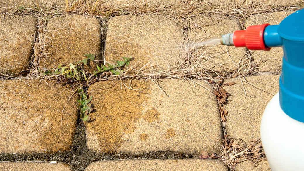 cual es el mejor herbicida total