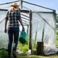 hacer semillero invernadero
