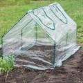 invernaderos semilleros